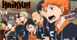 © HAIKYU‼ TO THE TOP